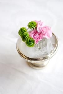 グラスに活けられたピンクの花の写真素材 [FYI03955776]