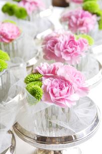 グラスに活けられたピンクの花の写真素材 [FYI03955777]