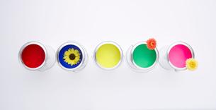 カラフルなペンキと花の写真素材 [FYI03955871]