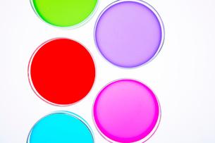 カラフルな色水の写真素材 [FYI03955883]