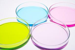 カラフルな色水の写真素材 [FYI03955884]