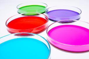 カラフルな色水の写真素材 [FYI03955885]