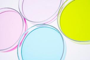 カラフルな色水の写真素材 [FYI03955886]