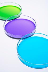 カラフルな色水の写真素材 [FYI03955890]