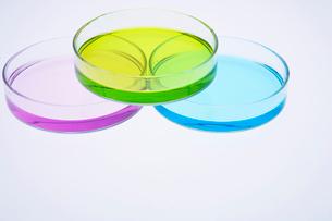 カラフルな色水の写真素材 [FYI03955891]