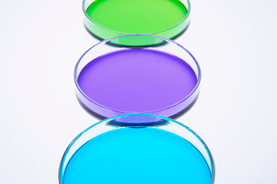 カラフルな色水の写真素材 [FYI03955893]