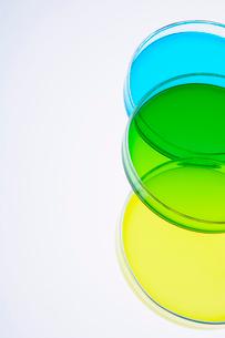 カラフルな色水の写真素材 [FYI03955895]