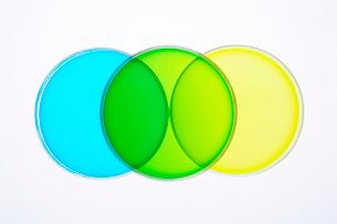 カラフルな色水の写真素材 [FYI03955896]