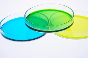 カラフルな色水の写真素材 [FYI03955897]