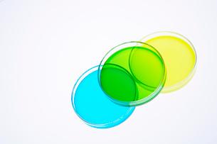 カラフルな色水の写真素材 [FYI03955898]
