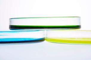 カラフルな色水の写真素材 [FYI03955899]