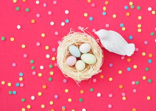 カラフルなバックと卵と鳥の写真素材 [FYI03955935]