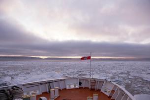 オホーツク海の流氷の写真素材 [FYI03955957]