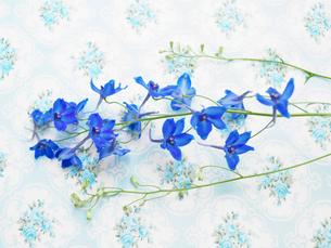花柄クロスと青い花々の写真素材 [FYI03956082]