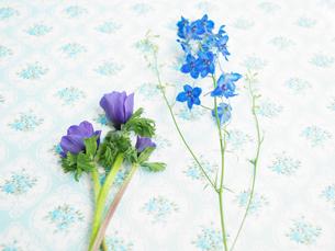 花柄クロスと青い花々の写真素材 [FYI03956085]