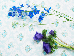 花柄クロスと青い花々の写真素材 [FYI03956086]