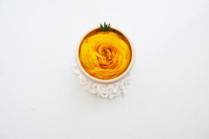 黄色のラナンキュラスの写真素材 [FYI03956175]