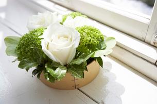 木製ボックスに入った花々の写真素材 [FYI03956181]