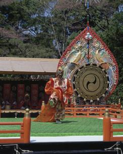 神宮神楽祭舞楽の写真素材 [FYI03956402]