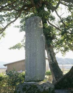 大伴家持の歌碑 因幡国庁跡の写真素材 [FYI03956454]
