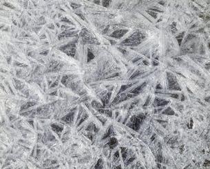 氷の写真素材 [FYI03956585]