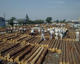 材木市場の写真素材 [FYI03956614]
