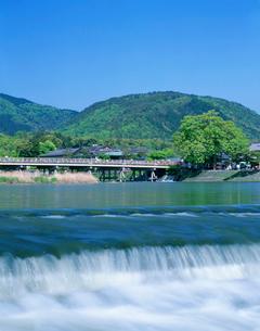 新緑の小倉山と渡月橋の写真素材 [FYI03957393]