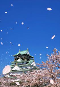 大阪城と桜吹雪の写真素材 [FYI03957767]