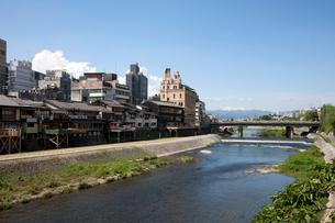 夏雲と鴨川と四条大橋の写真素材 [FYI03957956]