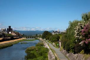 夏の鴨川と三条大橋の写真素材 [FYI03957957]