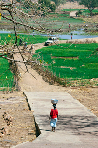 タマネギ畑と水汲みの女性達の写真素材 [FYI03958642]