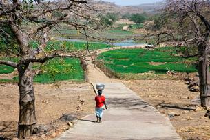 タマネギ畑と水汲みの女性達の写真素材 [FYI03958644]