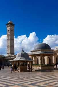 グランド・モスク 世界遺産の写真素材 [FYI03958780]