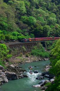 新緑のトロッコ列車の写真素材 [FYI03958824]