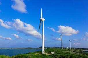 西平安名崎の風力発電の写真素材 [FYI03959001]