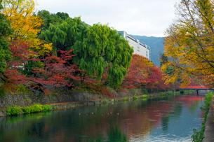 琵琶湖疏水の写真素材 [FYI03959234]