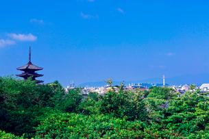 八坂の塔の写真素材 [FYI03959370]