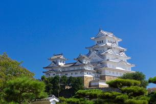 姫路城の写真素材 [FYI03959674]