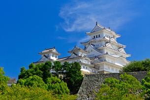 姫路城の写真素材 [FYI03959678]