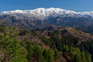 新雪の白山の写真素材 [FYI03959831]