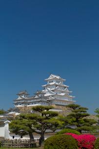 姫路城の写真素材 [FYI03959962]