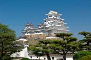 姫路城の写真素材 [FYI03959976]