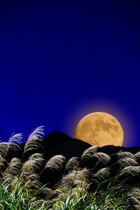 月とススキの写真素材 [FYI03960051]