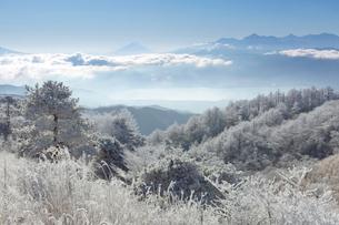 高ボッチからの富士山の写真素材 [FYI03960131]