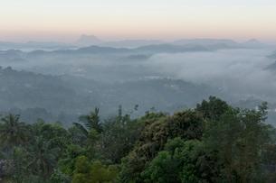 キャンディの町と朝霧の写真素材 [FYI03960171]