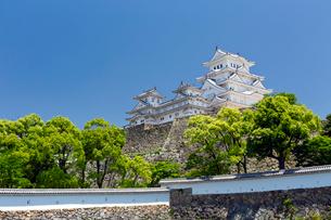 新緑の姫路城の写真素材 [FYI03960258]