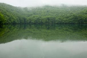 蔦沼の写真素材 [FYI03960339]