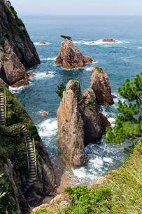 浦富海岸 千貫松島の写真素材 [FYI03960353]