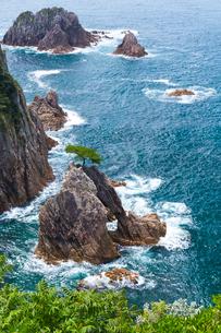 浦富海岸 千貫松島の写真素材 [FYI03960357]