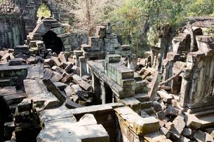 ベンメリア遺跡 の写真素材 [FYI03960624]